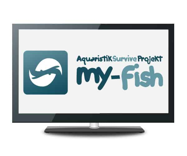 my fish tv
