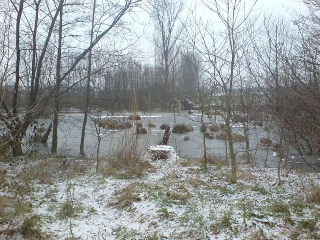 See im Winter - Tümpeln