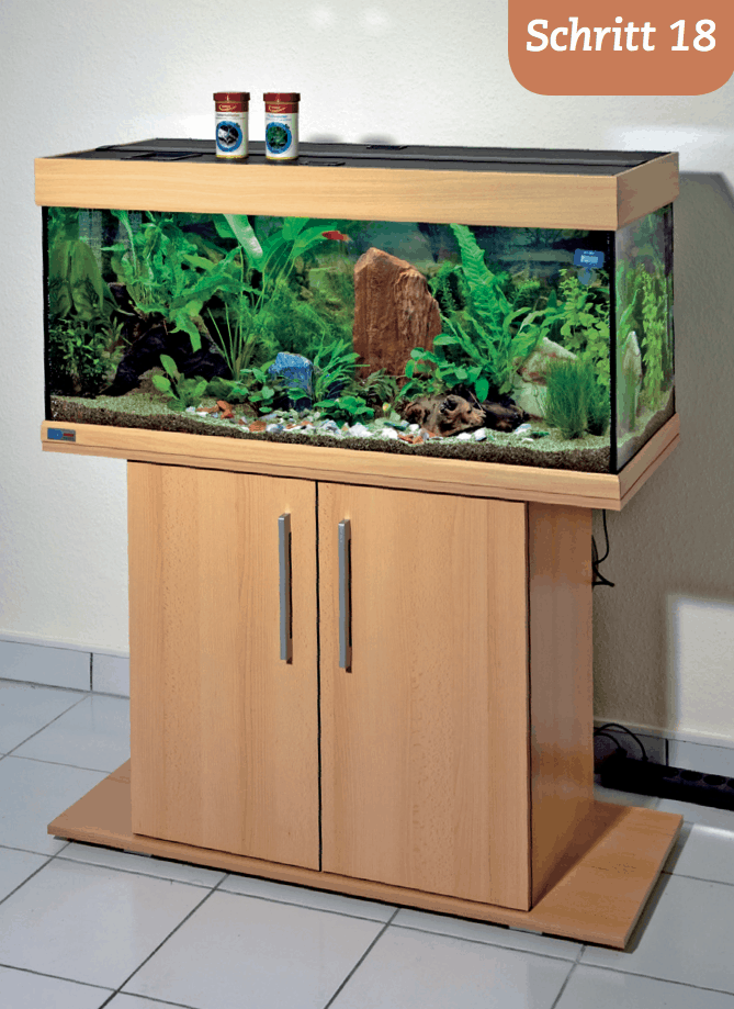 Die Einrichtung My Fish
