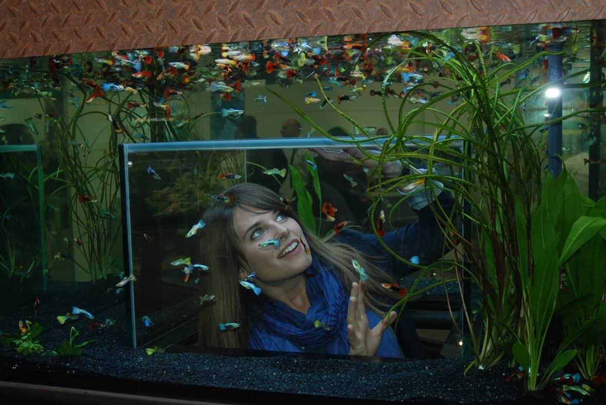 my-fish auf der Interzoo 2012 5
