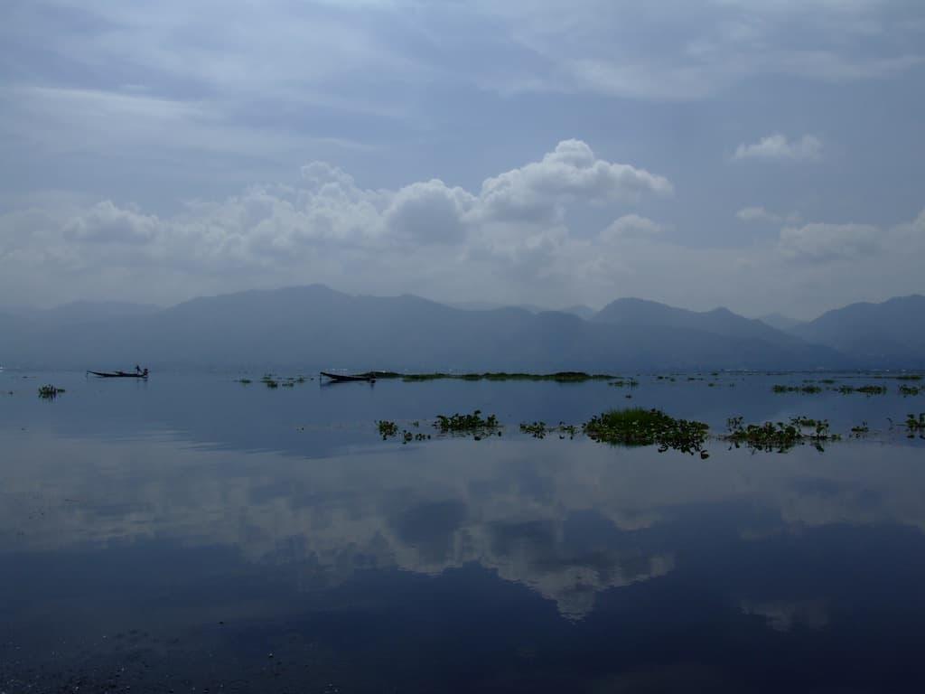 Flüsse und Seen - die Heimat unserer Fische & Wirbellosen 1