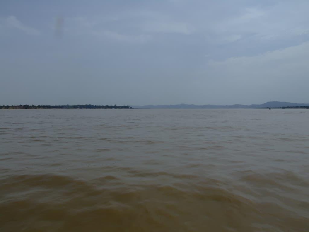 Flüsse und Seen - die Heimat unserer Fische & Wirbellosen 2