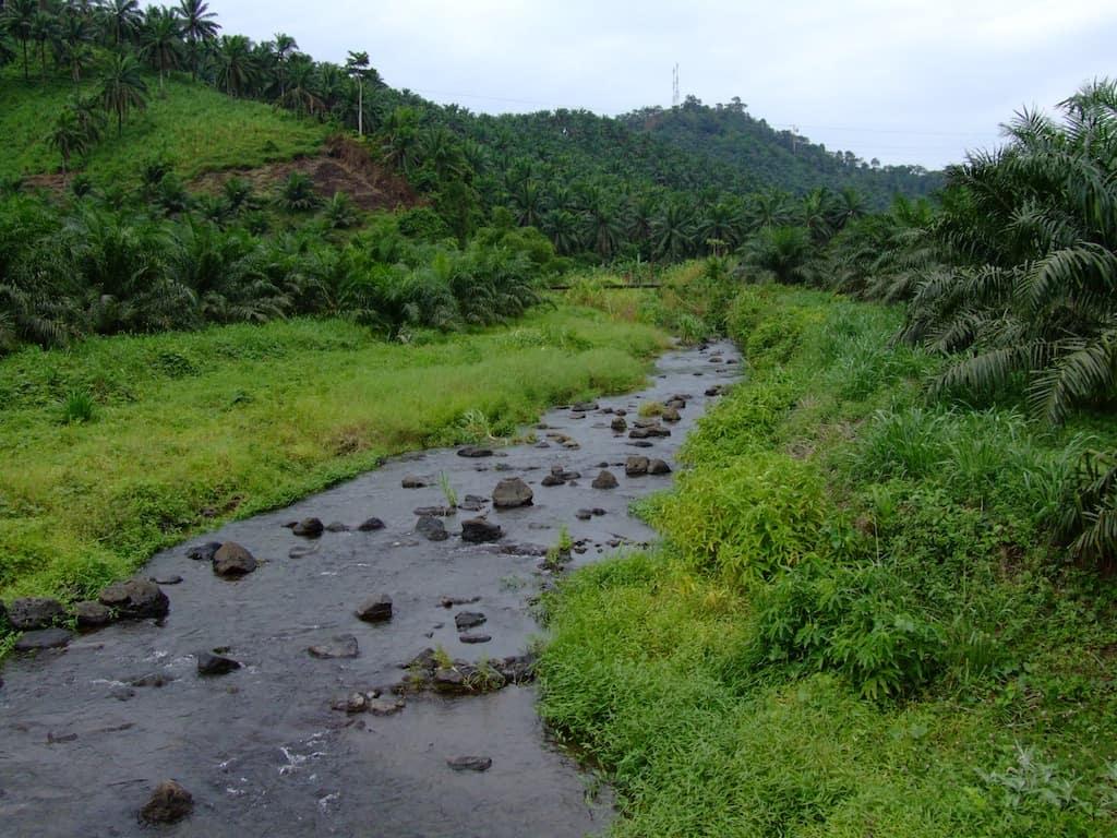 Flüsse und Seen - die Heimat unserer Fische & Wirbellosen 3