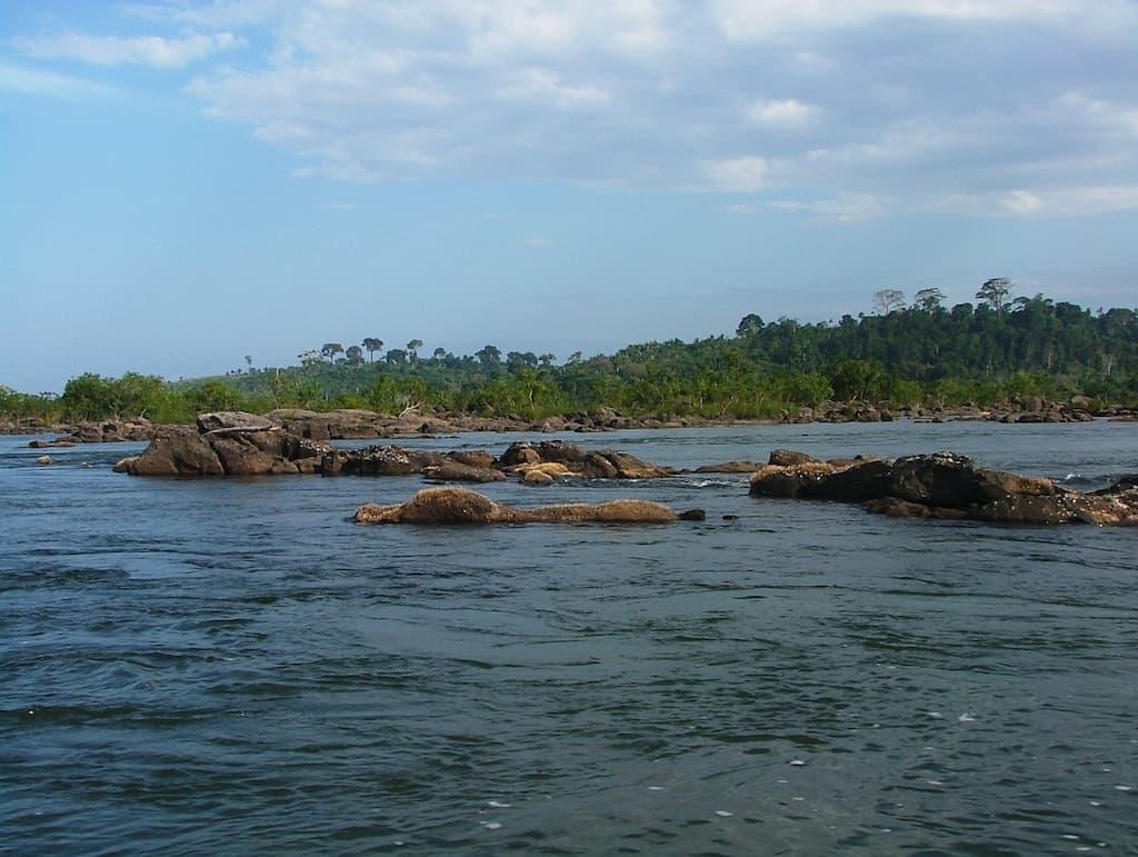 Flüsse und Seen - die Heimat unserer Fische & Wirbellosen 5