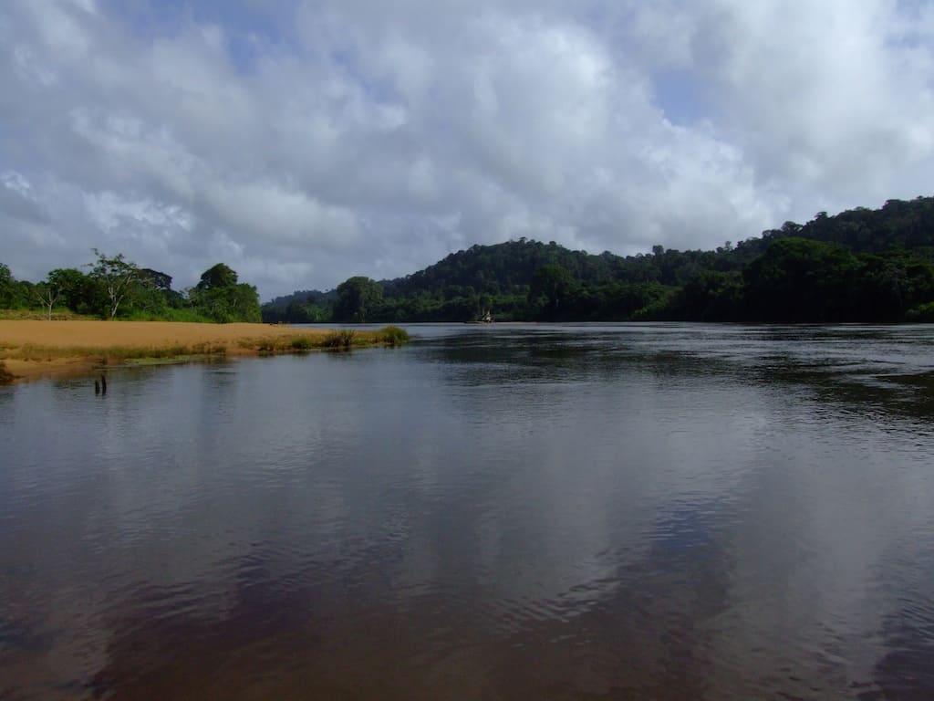 Flüsse und Seen - die Heimat unserer Fische & Wirbellosen 7