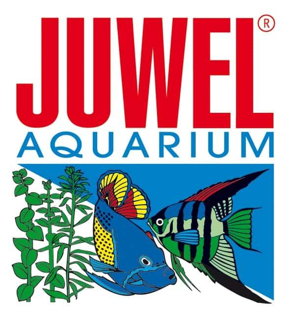 my-fish zu Besuch bei Juwel 1