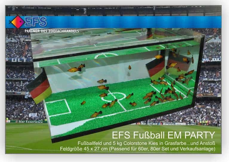 EFS startet die Fußball EM Party unter Wasser 1