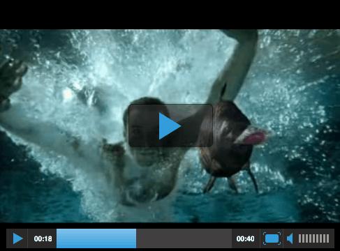 Medienpräsenz in der Aquaristik Teil 2 2
