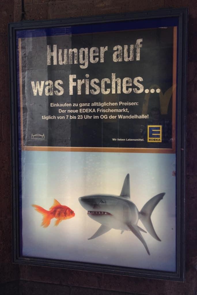 Medienpräsenz in der Aquaristik Teil 2 3