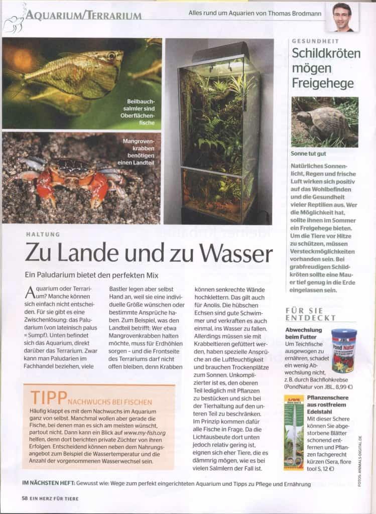"""my-fish im Tiermagazin """"Ein Herz für Tiere"""" 1"""