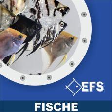 EFS - Partner des Zoofachhandels 2