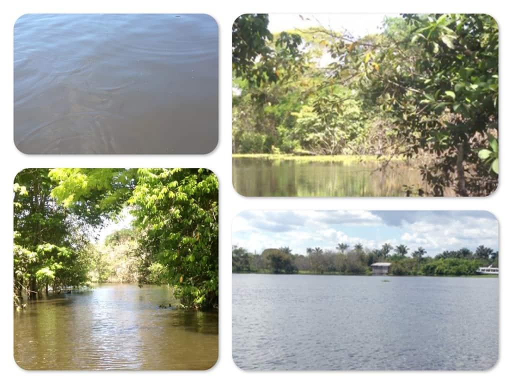 Der Natur auf der Spur in Brasilien - Video Tagebuch 2 1