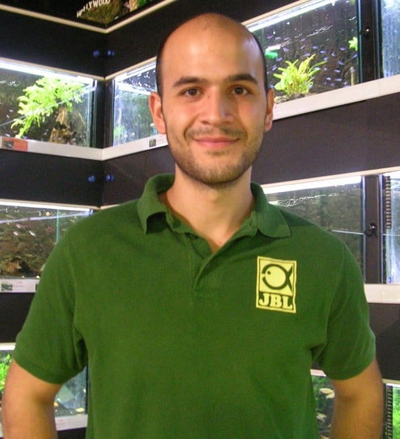 zookauf Aquarien-Einrichtungsmeisterschaft 2012: Fünf Finalisten stehen fest 2