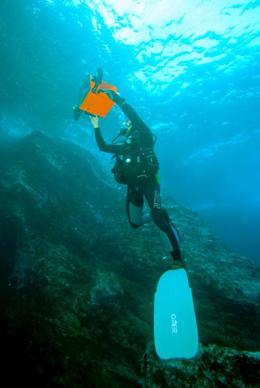Unterwasserwelt in 3D: Jacobs-Forscher testen neues Kamerasystem in den Küstengewässern der Azoren 1