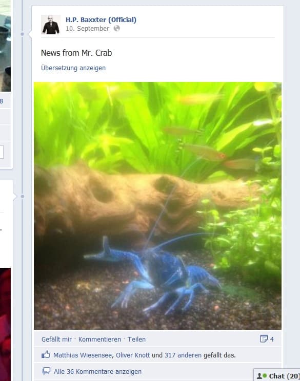 Promis mit Hobby Aquaristik 1