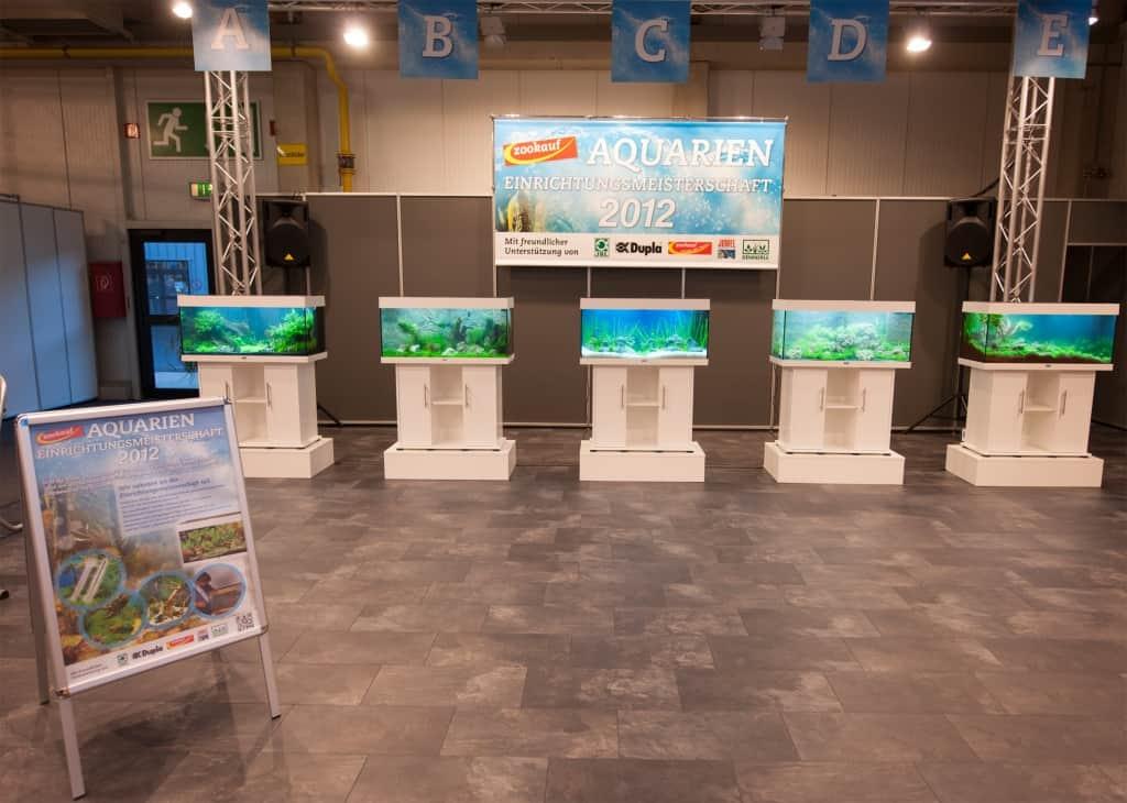 zookauf Aquarien-Einrichtungsmeisterschaft 2012: Strahlende Gewinner und fantastische Wettbewerbsbeiträge 5