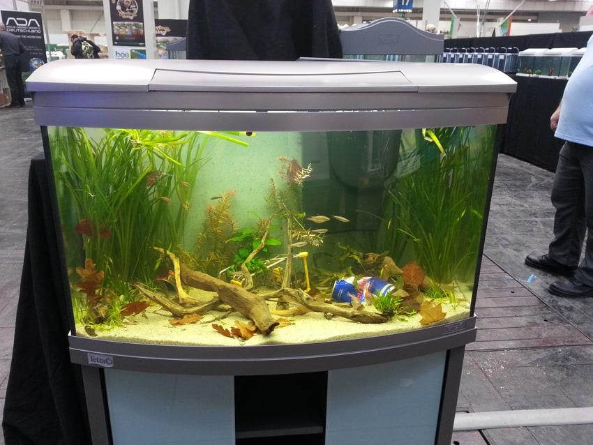 Umweltverschmutzung im Aquarium dargestellt
