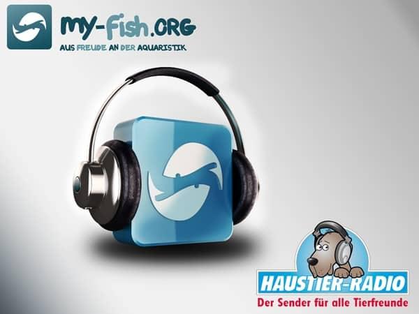 RadioSendung_Logo