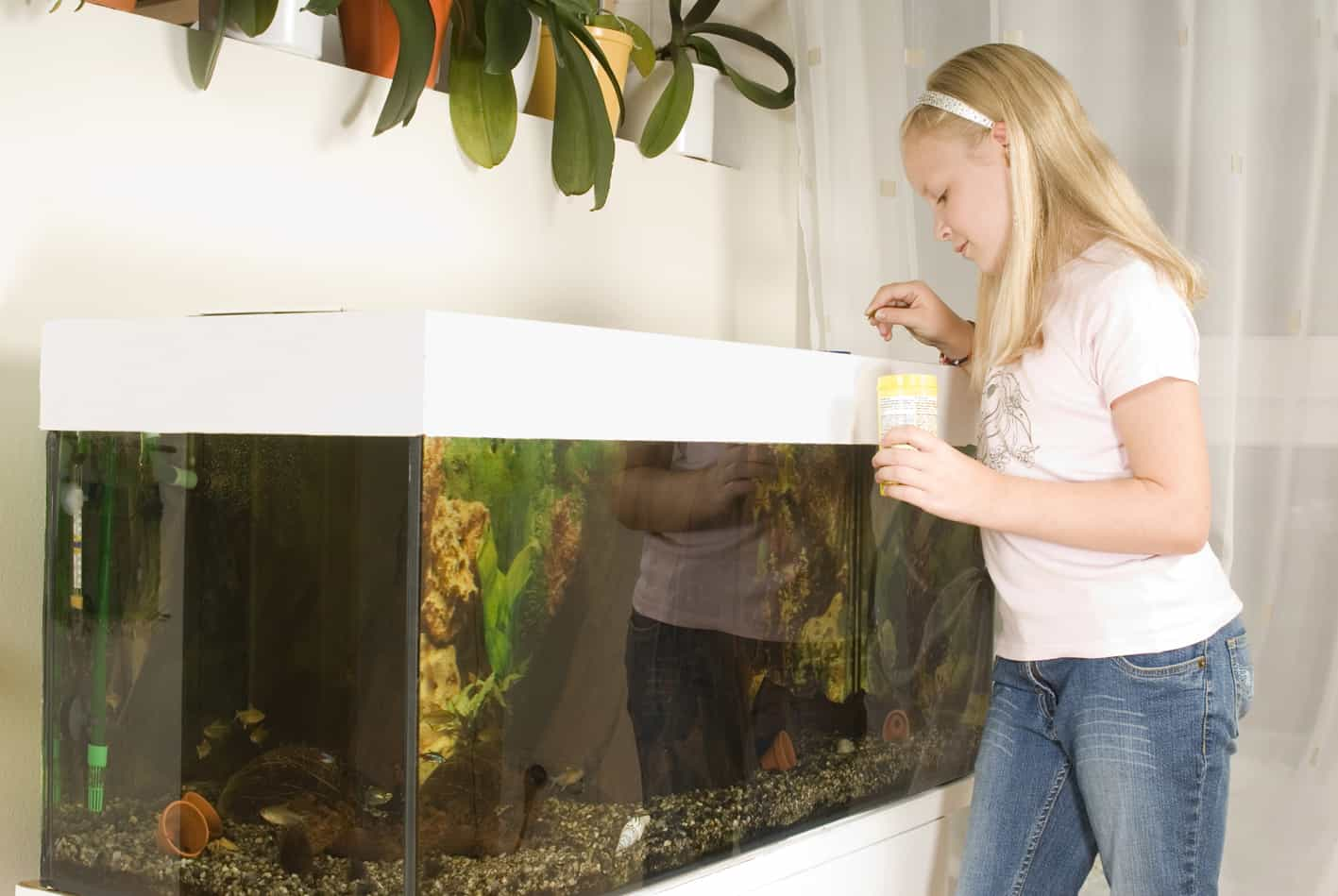 Mädchen füttert Fische