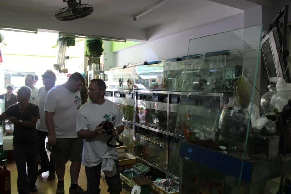 ein heruntergekommenes Aquaristik-Geschäft