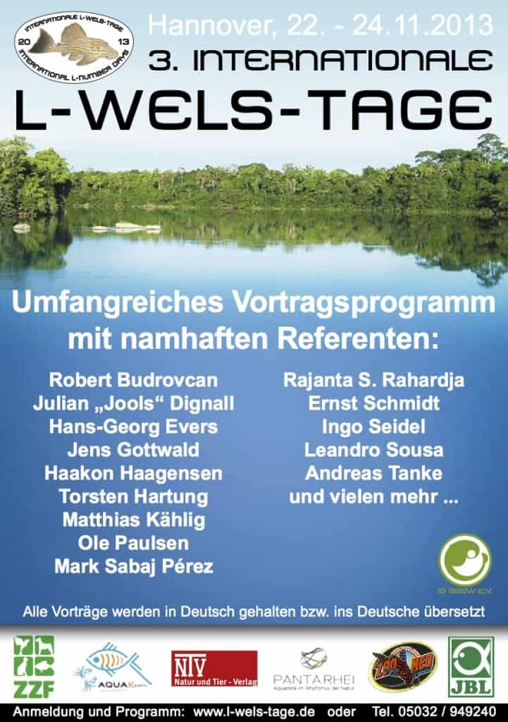 3_internationale_l-wels-tage_2013_flyer_deutsch_screen