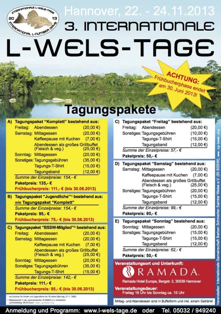 3_internationale_l-wels-tage_2013_flyer_deutsch_screen1