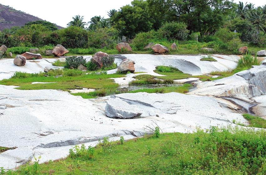Kleine Tümpel an der Peripherie des Gewässerkomplexes