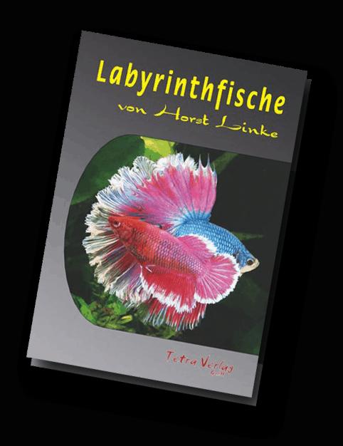 Quelle: Tetra-Verlag