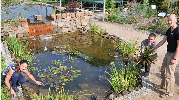 Dr. Gabriele Baumann, Lennart Böhlje sowie Ulrich Kapteina setzen die letzten Wasserpflanzen im neu angelegten Teich des Schulgartens im Park der Gärten.  Bild: Park der Gärten