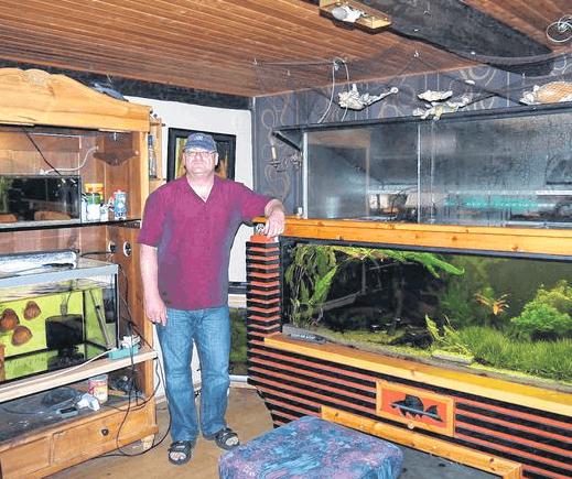 Begeisterter Aquarianer: Rüdiger Louwers aus Ostheim beschäftigt sich leidenschaftlich mit Fischen. Foto: Rebecca Vogt