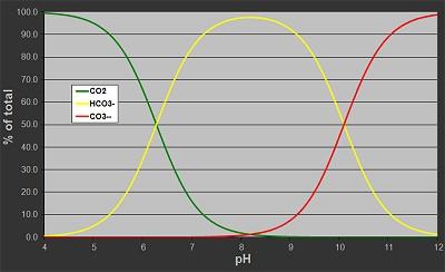 CO2 HCO3 CO3_400