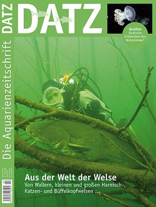 Datz 01/2014