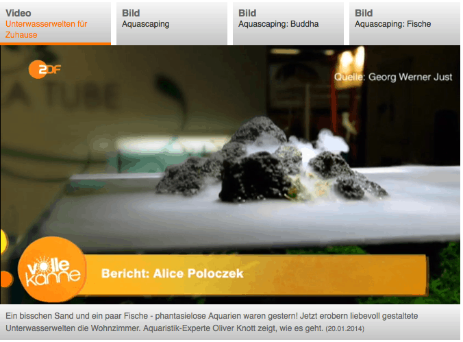 Quelle: ZDF Mediathek