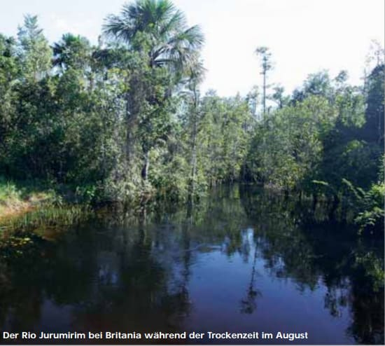 Der Rio Jurumirm. Quelle: Tetra Verlag.
