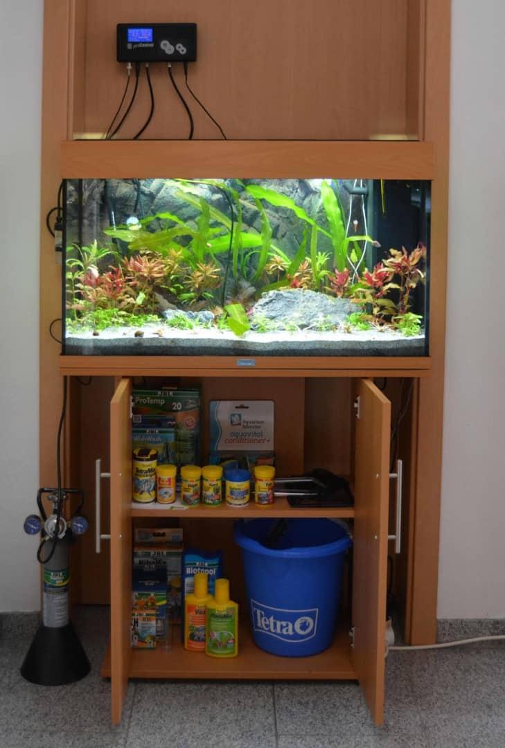 So kann ein fertig aufgebautes und eingerichtetes Aquarium mit vollem Schrank aussehen.
