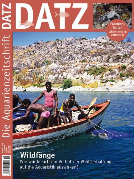 Cover Datz 11-2014