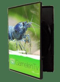 DVD GarnelenTV