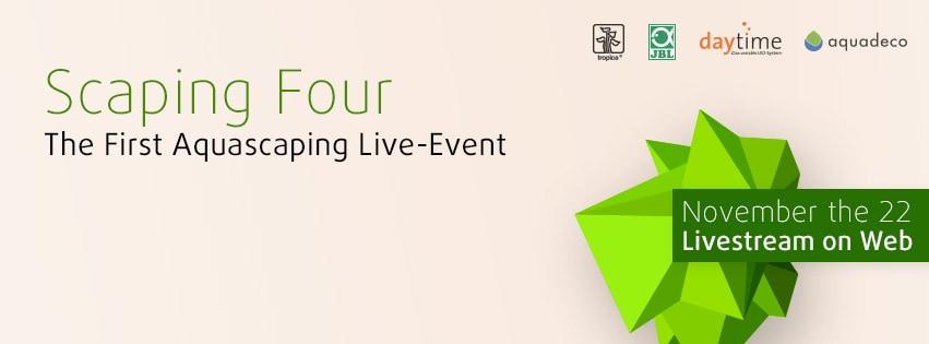 Scaping Four - Aquascaping Livestream