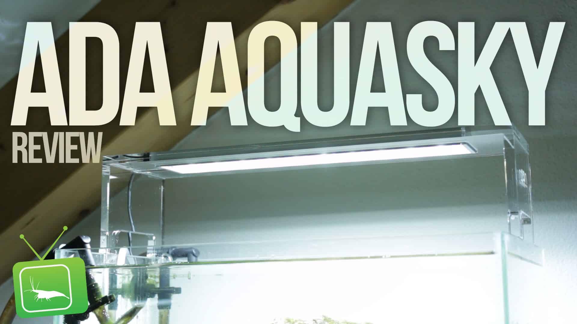 garnelentv ada aqasky 361 led abstammung garnelen vergesellschaftung fische krebse schnecken. Black Bedroom Furniture Sets. Home Design Ideas