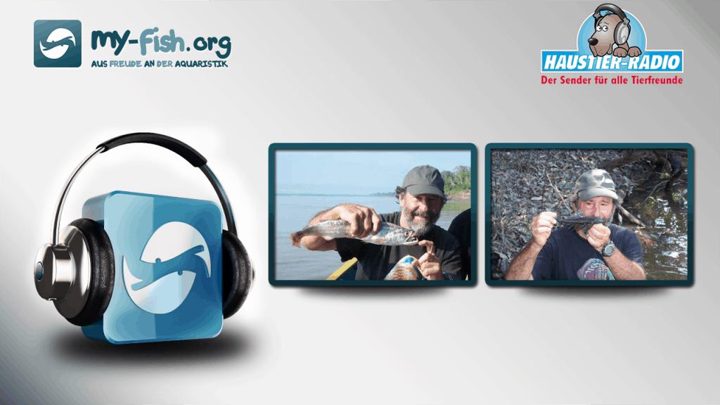Aquaristik Podcast - Keine Sendung mehr verpassen 11