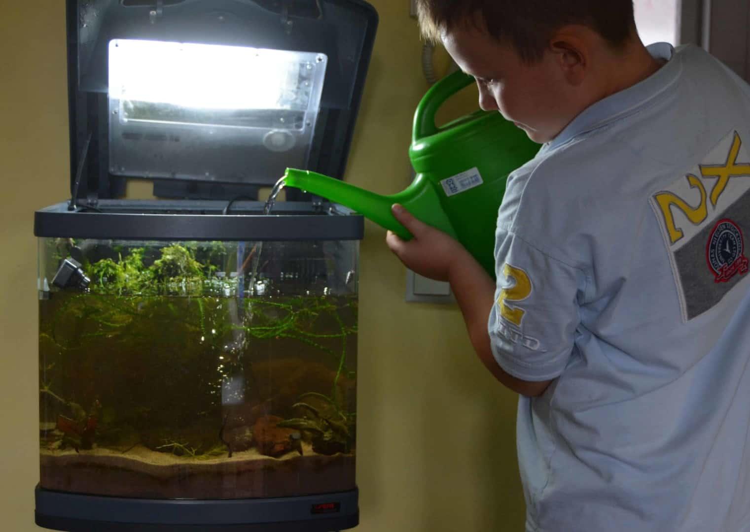 Wasserwechsel Kids