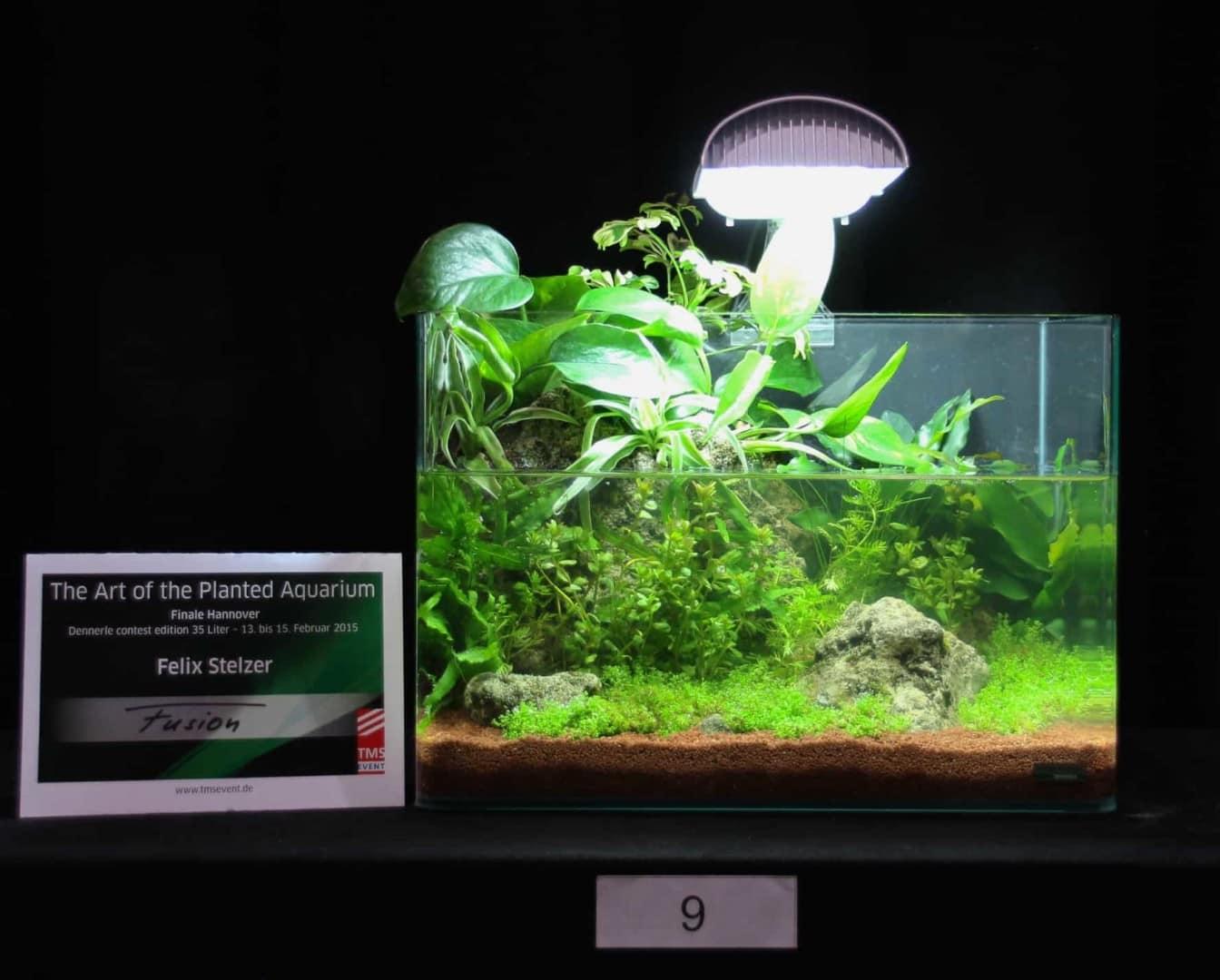 Heimtiermesse Hannover 2015 - THE ART OF THE PLANTED AQUARIUM 27