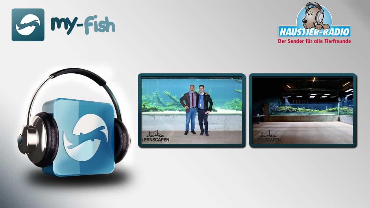 my-fish radio & lernscapen.de