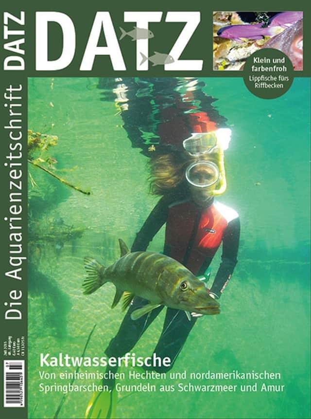 Cover DATZ 7-2015