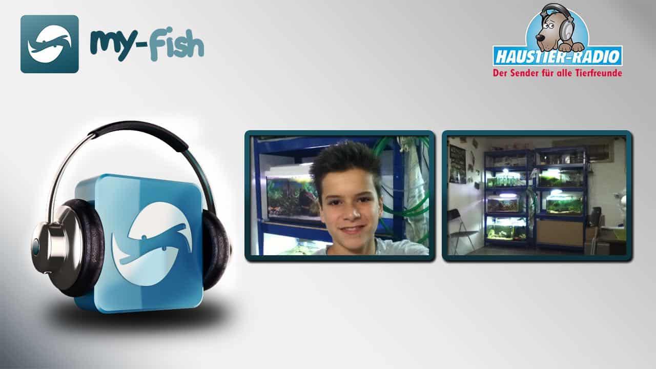 Podcast Episode #74: Aquarianer-Nachwuchs auf YouTube - Fische statt Playstation (Max Stauffer) 1