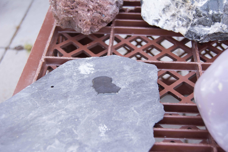Welche Steine härten das Aquarienwasser auf? 10