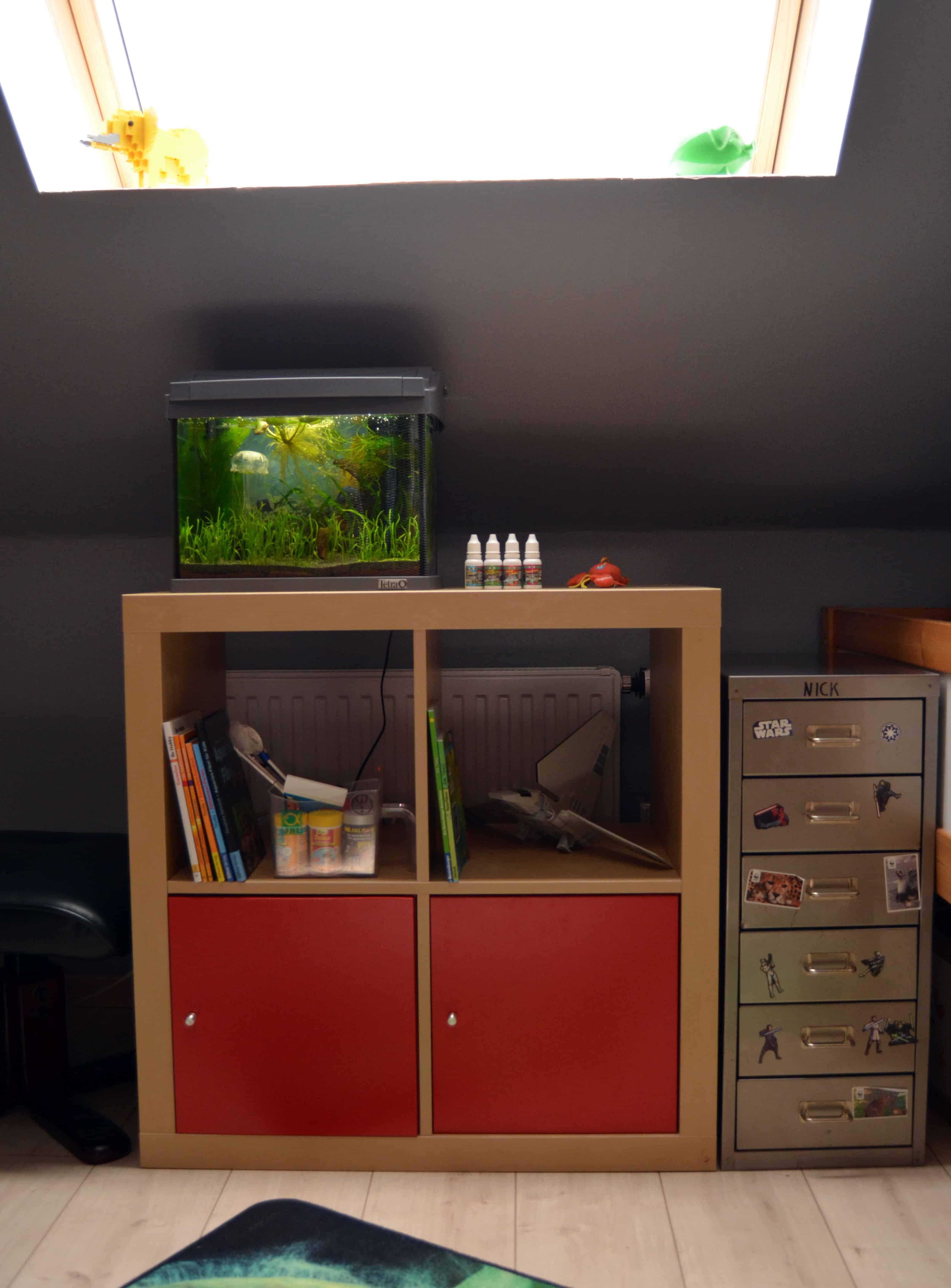 Erste Schritte zum eigenen Aquarium 6