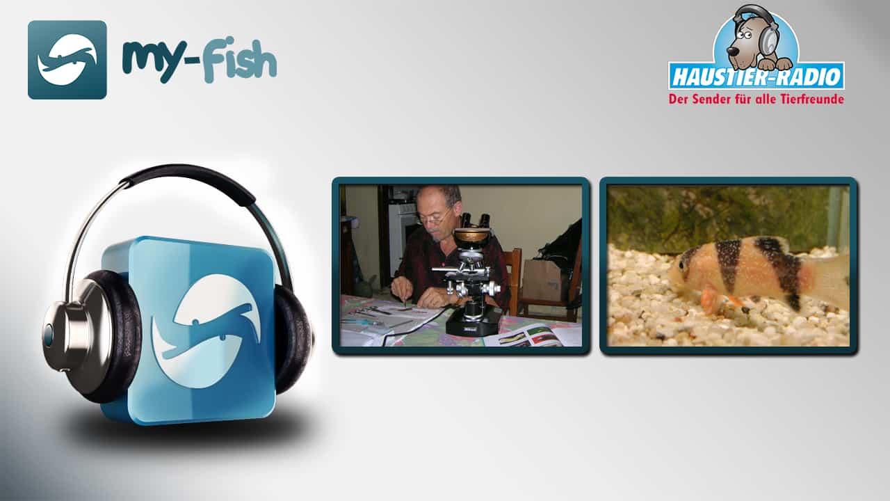 Aquaristik Podcast - Keine Sendung mehr verpassen 5