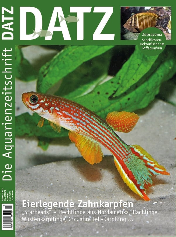 2015-12_Cover