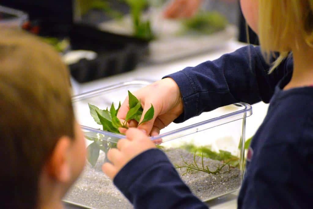 Bildnachweis: Messe Sindelfingen)):Im Aquarium-Workshop für Kids auf der Fisch & Reptil können die jungen Aquarianer kostenlos unter Anleitung ihr eigenes Aquarium gestalten – und dieses danach mit nach Hause nehmen.